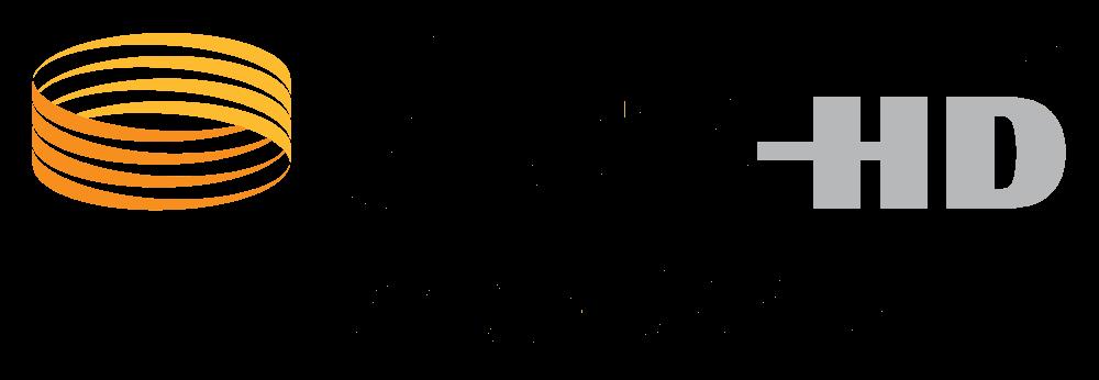 DTS Master Audio Logo