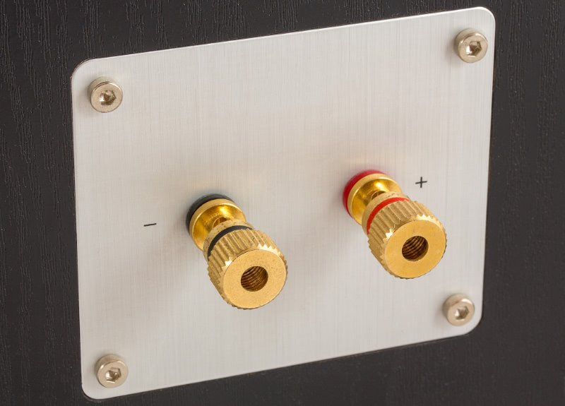 Speaker Wire Terminals On The Rear Of A Speaker